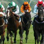 Corrida de cavalos: Saiba como apostar em corrida de cavalos