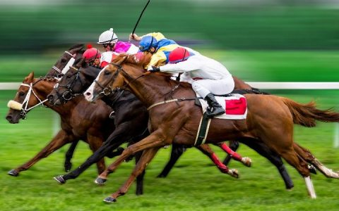 Corrida de cavalos: Como ter lucro em corrida de cavalos?
