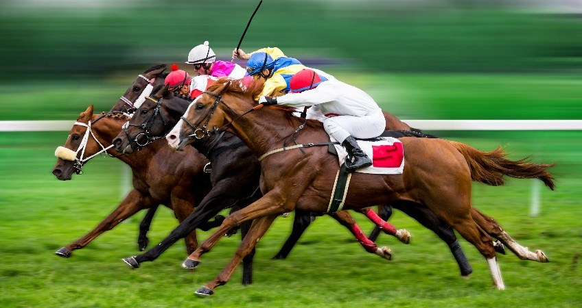 corrida-de-cavalos
